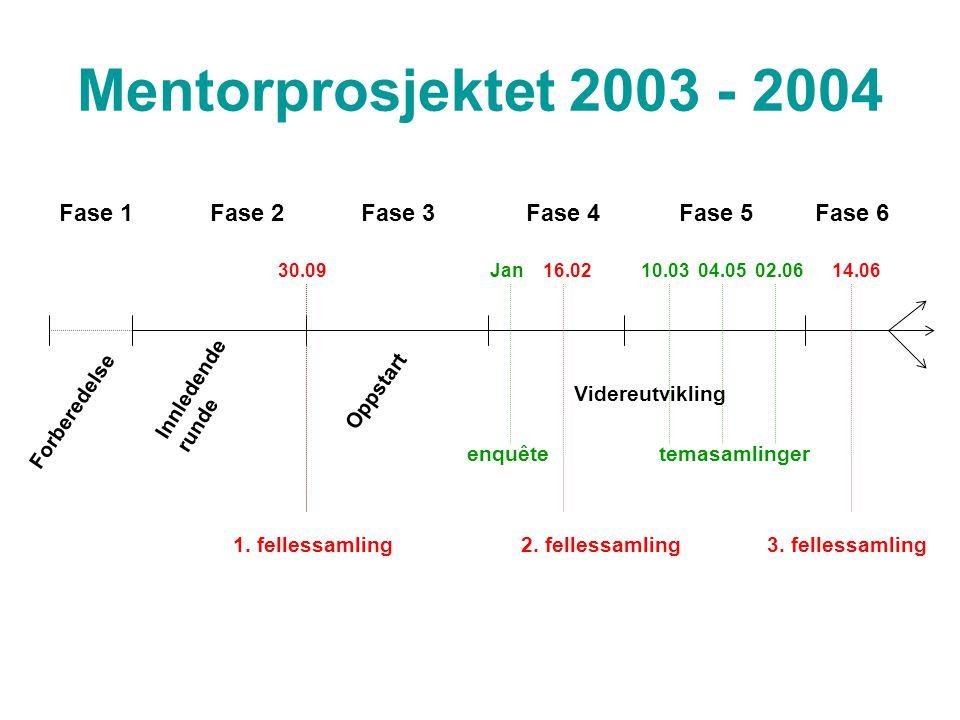 Mentorprosjektet 2003 - 2004 Forberedelse Innledende runde Oppstart Videreutvikling Fase 1Fase 2Fase 3 Fase 4Fase 5Fase 6 30.09Jan 16.02 10.03 04.05 02.06 14.06 enquêtetemasamlinger 1.
