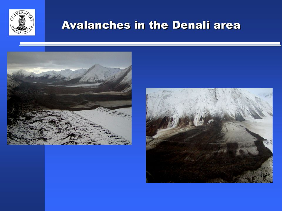 Avalanches in the Denali area
