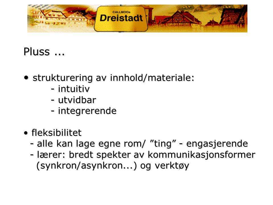 Pluss (2) teknisk fleksibilitet - alt fra internett kan integreres: ordbøker, Babelfisch ...