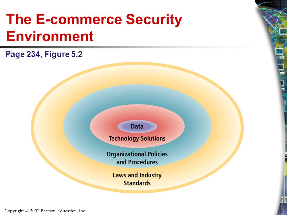 Copyright © 2002 Pearson Education, Inc. The E-commerce Security Environment Page 234, Figure 5.2