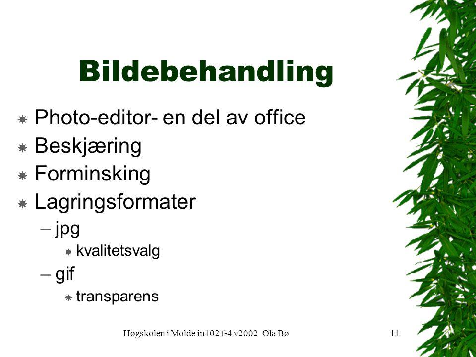 Høgskolen i Molde in102 f-4 v2002 Ola Bø11 Bildebehandling  Photo-editor- en del av office  Beskjæring  Forminsking  Lagringsformater –jpg  kvalitetsvalg –gif  transparens