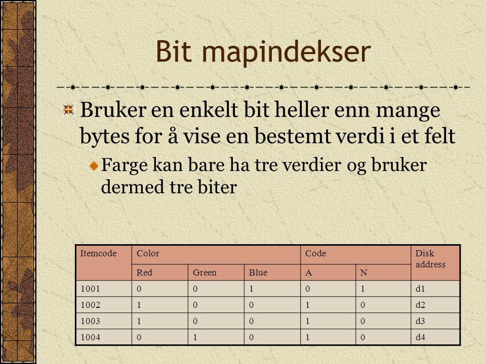 Bit mapindekser Bruker en enkelt bit heller enn mange bytes for å vise en bestemt verdi i et felt Farge kan bare ha tre verdier og bruker dermed tre b