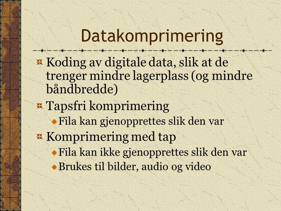 Datakomprimering Koding av digitale data, slik at de trenger mindre lagerplass (og mindre båndbredde) Tapsfri komprimering Fila kan gjenopprettes slik