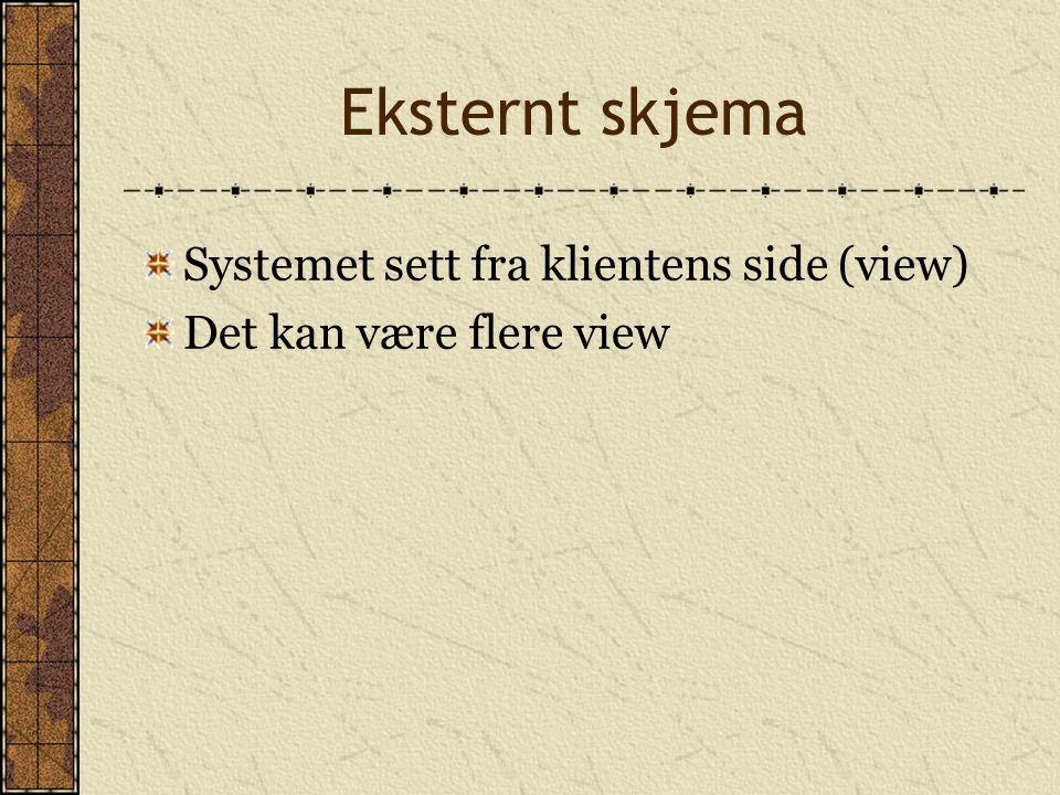 Eksternt skjema Systemet sett fra klientens side (view) Det kan være flere view