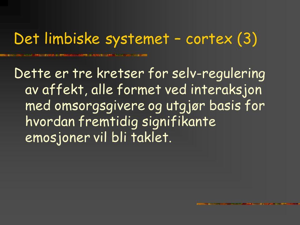 Det limbiske systemet – cortex (3) Dette er tre kretser for selv-regulering av affekt, alle formet ved interaksjon med omsorgsgivere og utgjør basis f