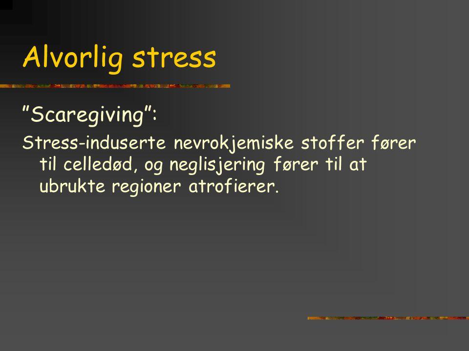 """Alvorlig stress """"Scaregiving"""": Stress-induserte nevrokjemiske stoffer fører til celledød, og neglisjering fører til at ubrukte regioner atrofierer."""