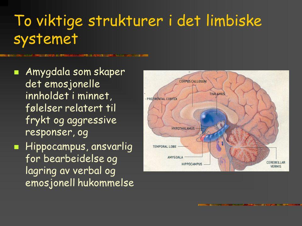 To viktige strukturer i det limbiske systemet Amygdala som skaper det emosjonelle innholdet i minnet, følelser relatert til frykt og aggressive respon