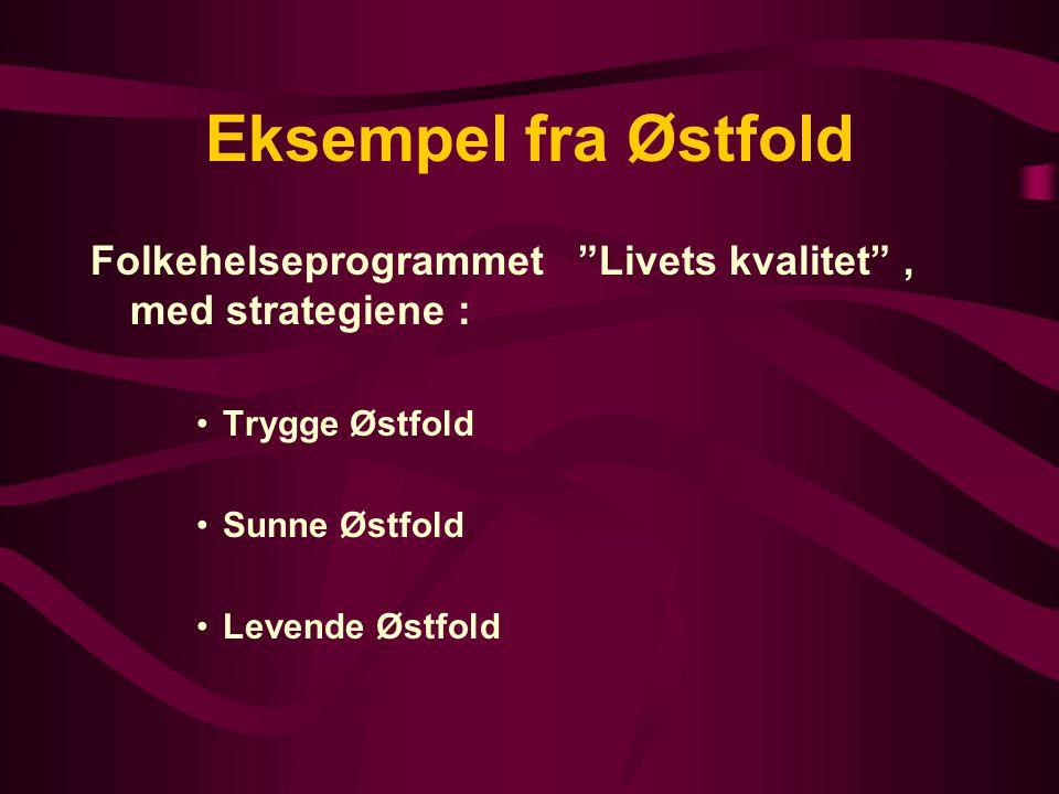 Eksempel fra Østfold Folkehelseprogrammet Livets kvalitet , med strategiene : Trygge Østfold Sunne Østfold Levende Østfold