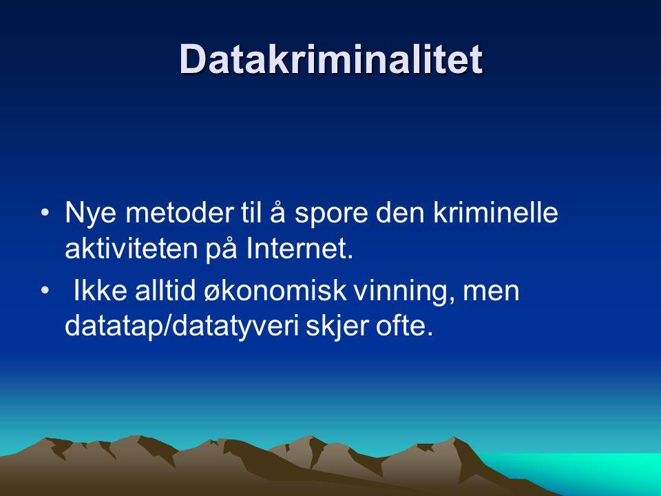 Datakriminalitet Nye metoder til å spore den kriminelle aktiviteten på Internet.