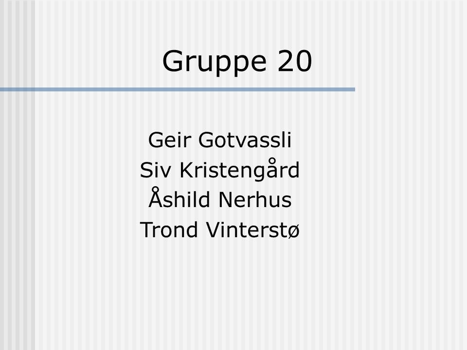 Gruppe 20 Geir Gotvassli Siv Kristengård Åshild Nerhus Trond Vinterstø