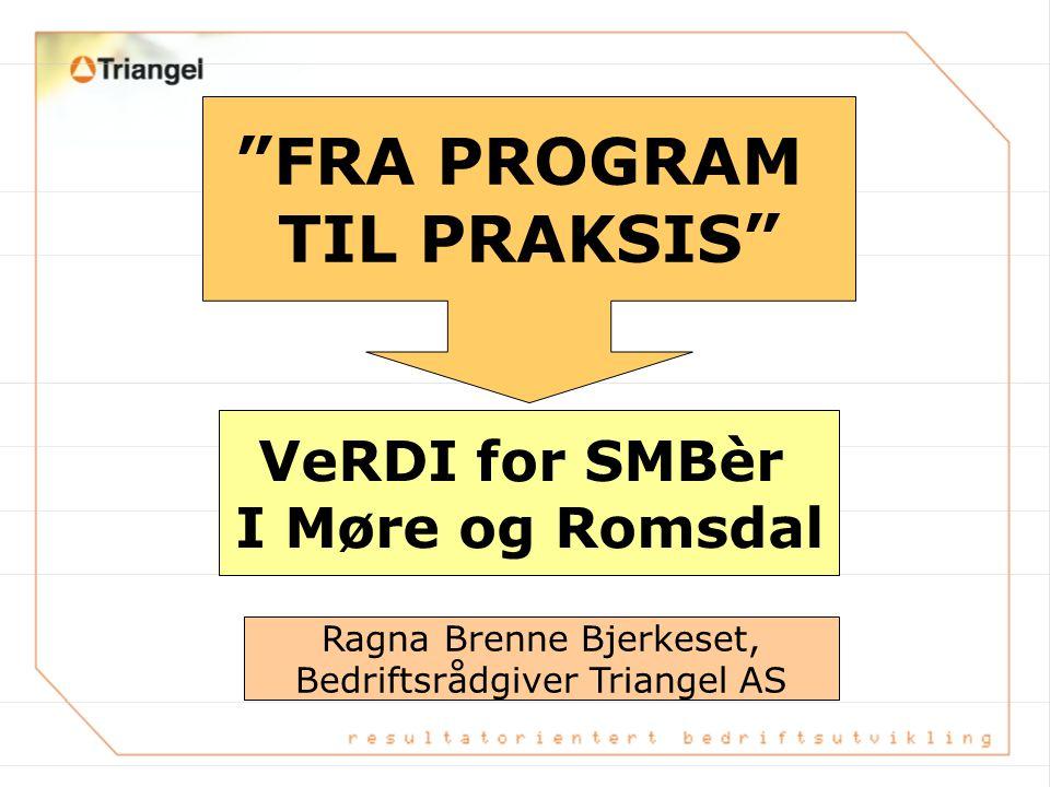 FRA PROGRAM TIL PRAKSIS VeRDI for SMBèr I Møre og Romsdal Ragna Brenne Bjerkeset, Bedriftsrådgiver Triangel AS