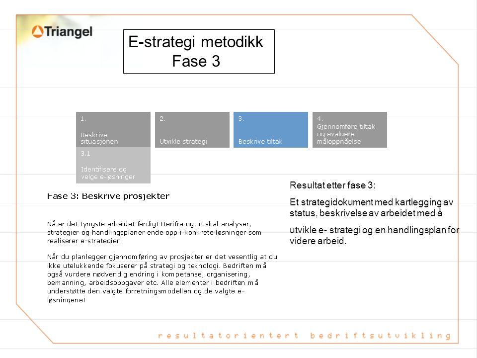 E-strategi metodikk Fase 2