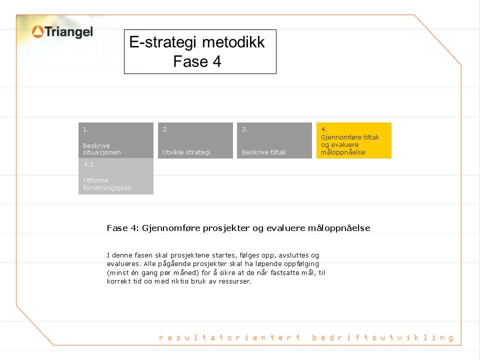 E-strategi metodikk Fase 3 Resultat etter fase 3: Et strategidokument med kartlegging av status, beskrivelse av arbeidet med å utvikle e- strategi og en handlingsplan for videre arbeid.