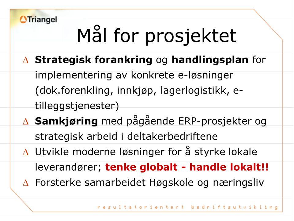 –Hvorfor strategisk innfallsvinkel ? VeRDI - e-Strategi