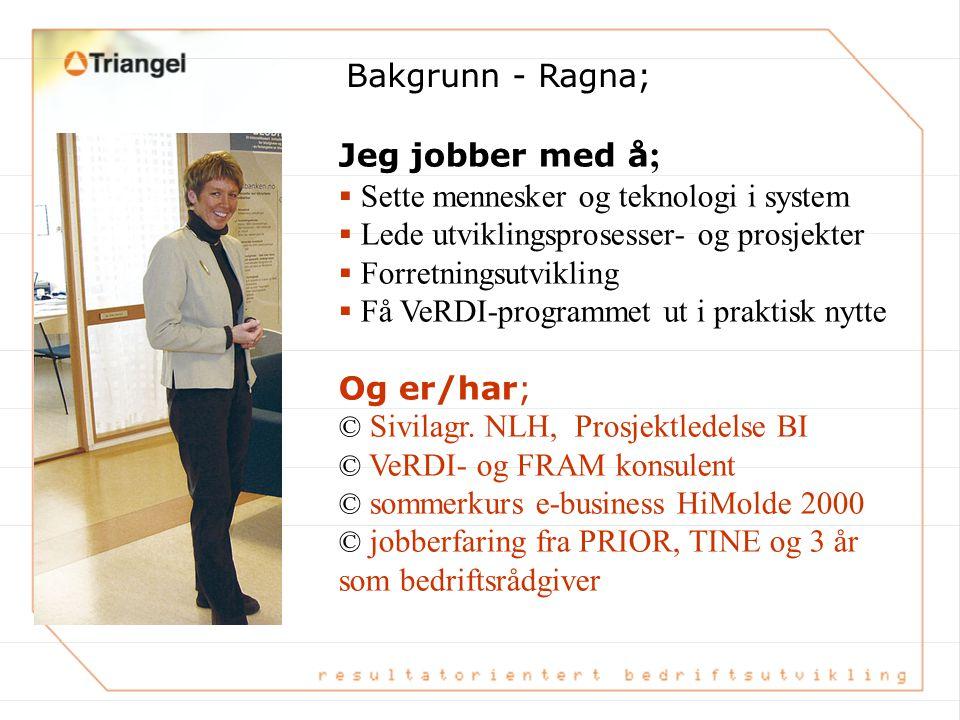 Jeg jobber med å ;  Sette mennesker og teknologi i system  Lede utviklingsprosesser- og prosjekter  Forretningsutvikling  Få VeRDI-programmet ut i praktisk nytte Og er/har; © Sivilagr.