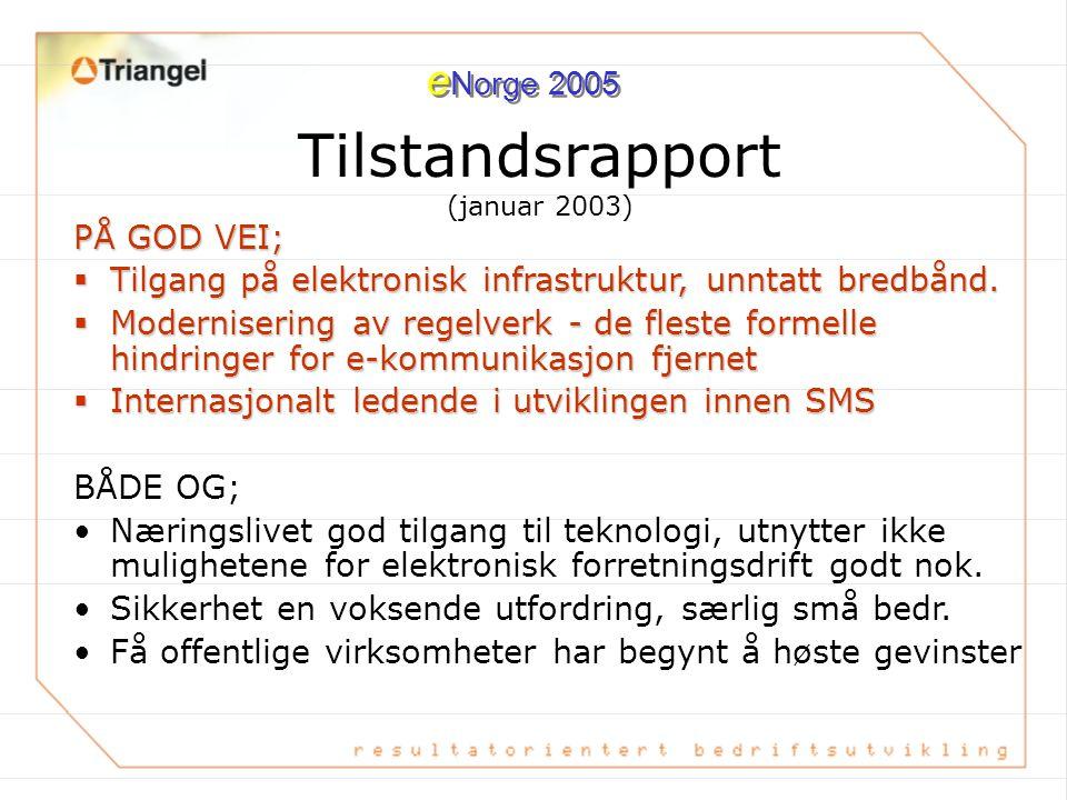 Tilstandsrapport (januar 2003) PÅ GOD VEI;  Tilgang på elektronisk infrastruktur, unntatt bredbånd.