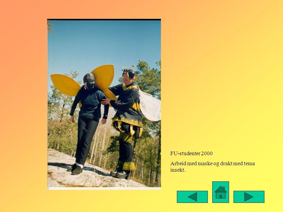 FU-studenter 2000 Arbeid med maske og drakt med tema insekt.