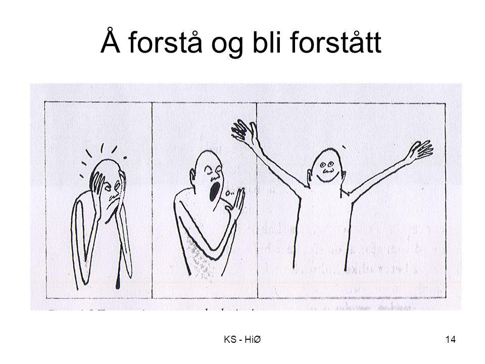 Å forstå og bli forstått KS - HiØ14