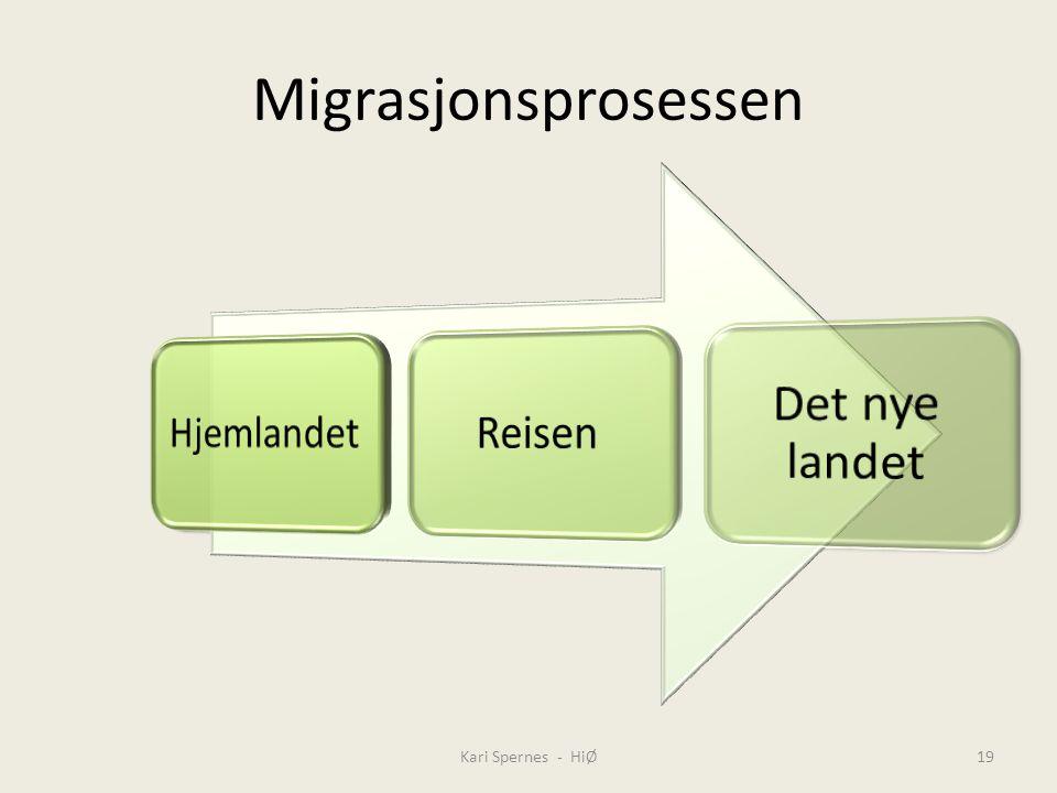 Migrasjonsprosessen Kari Spernes - HiØ19