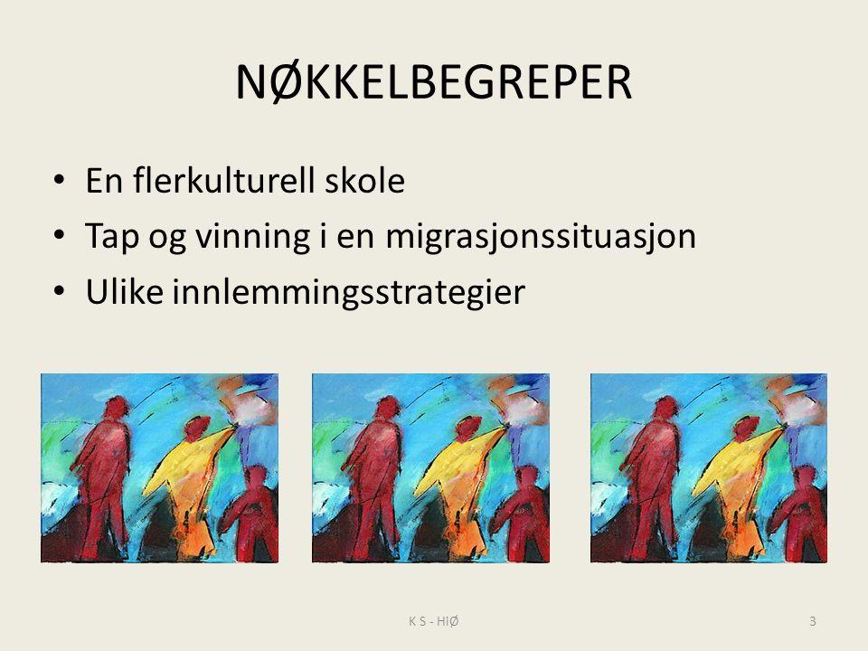 Begrepsbruk Minoritet – majoritet Norsk – etnisk norsk Bindestreksidentitet Kindereggbarn Neger, pakkis, svart, svarting, Fremmedkulturell - fremmedspråklig Verdinøytrale begrep.