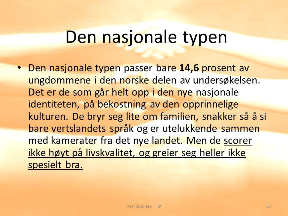 Den nasjonale typen Den nasjonale typen passer bare 14,6 prosent av ungdommene i den norske delen av undersøkelsen. Det er de som går helt opp i den n