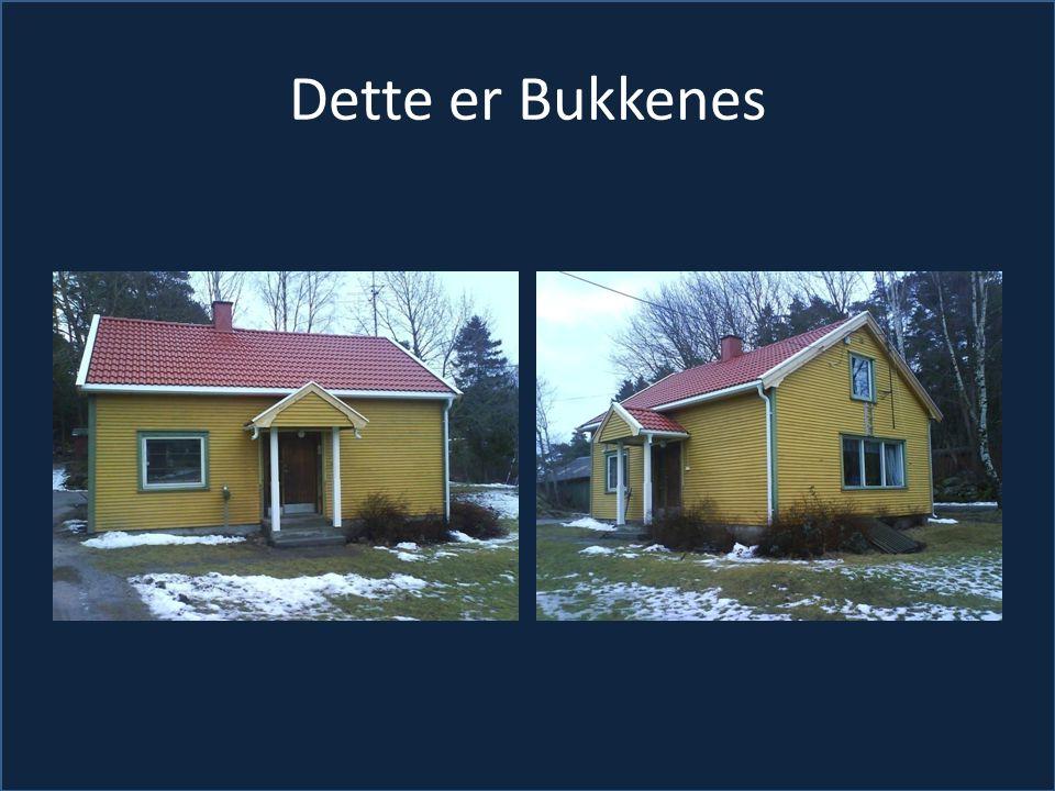 Dette er Bukkenes