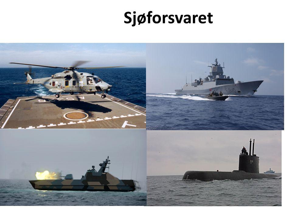 Sjøforsvaret