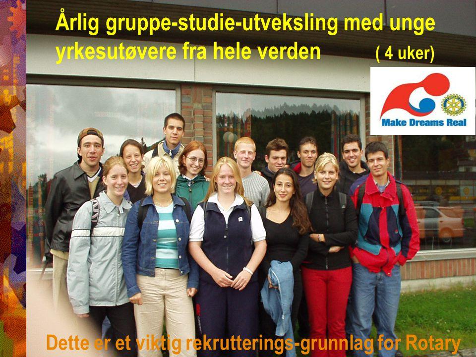 Årlig gruppe-studie-utveksling med unge yrkesutøvere fra hele verden ( 4 uker) Dette er et viktig rekrutterings-grunnlag for Rotary
