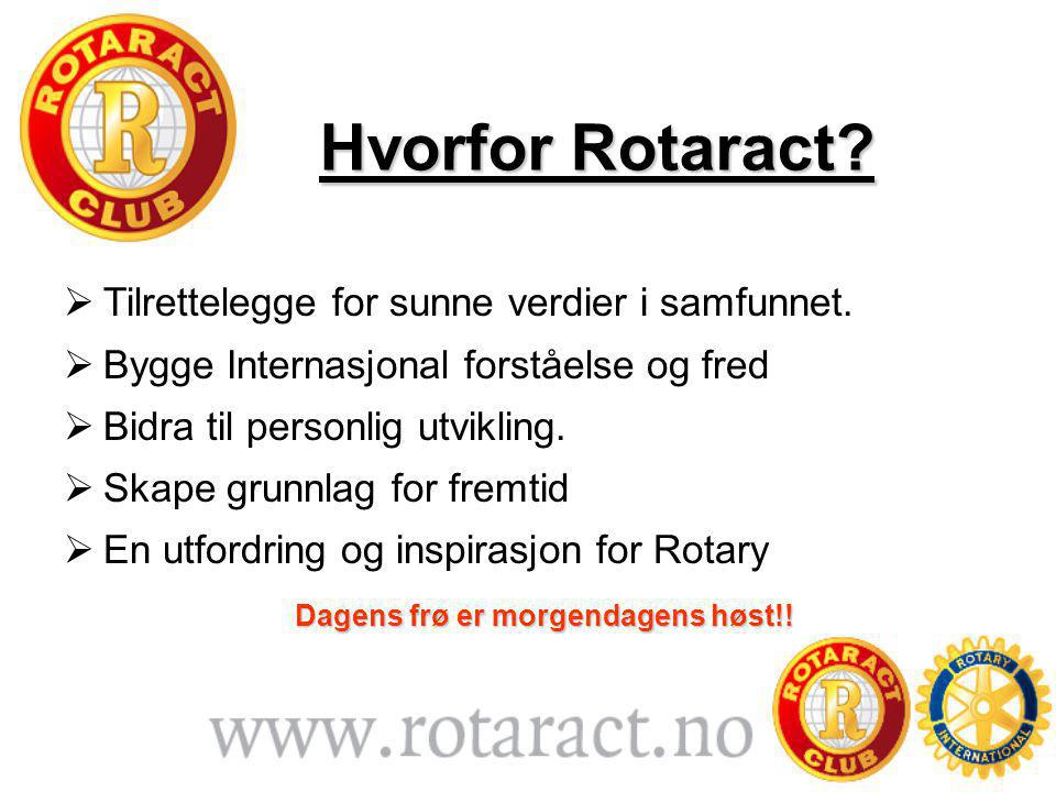 Hvorfor Rotaract.  Tilrettelegge for sunne verdier i samfunnet.
