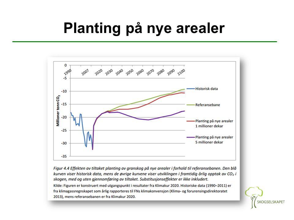 Planting på nye arealer