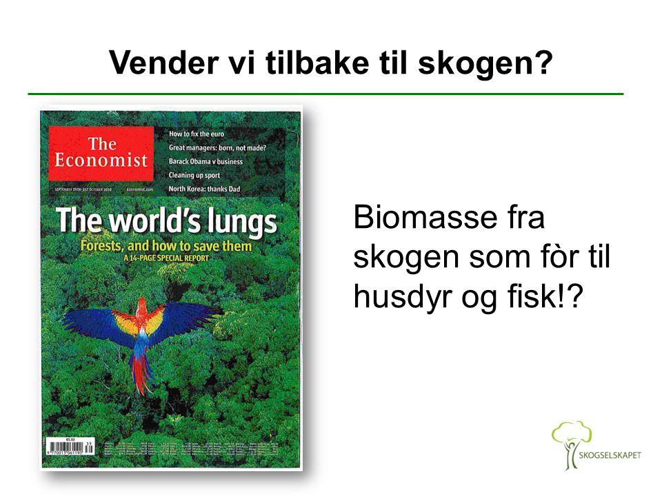 Vender vi tilbake til skogen? Biomasse fra skogen som fòr til husdyr og fisk!?