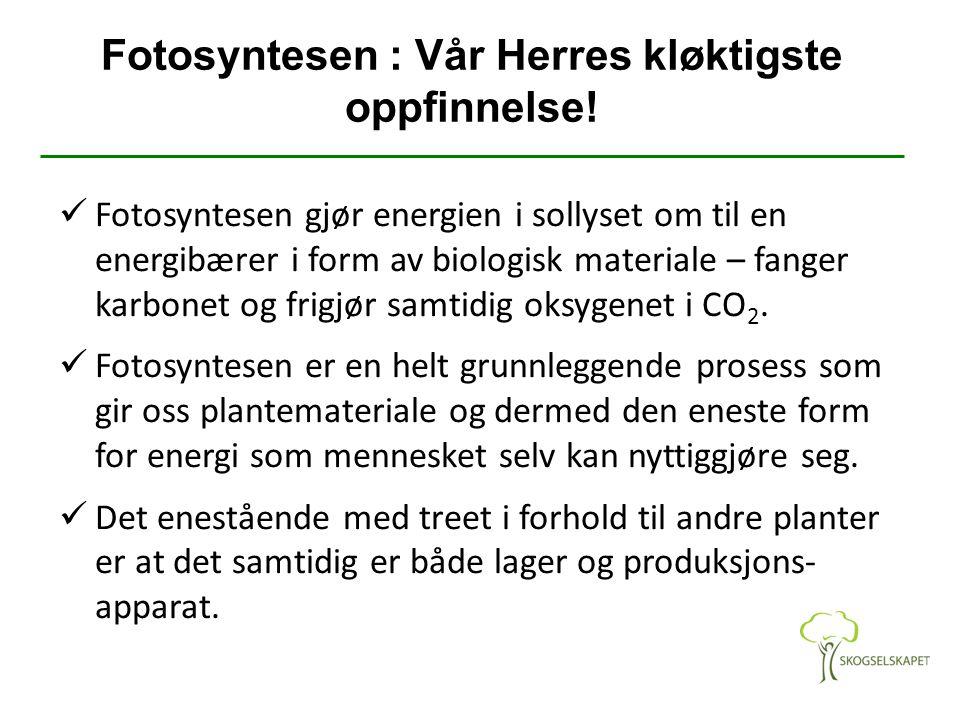 Fotosyntesen : Vår Herres kløktigste oppfinnelse! Fotosyntesen gjør energien i sollyset om til en energibærer i form av biologisk materiale – fanger k