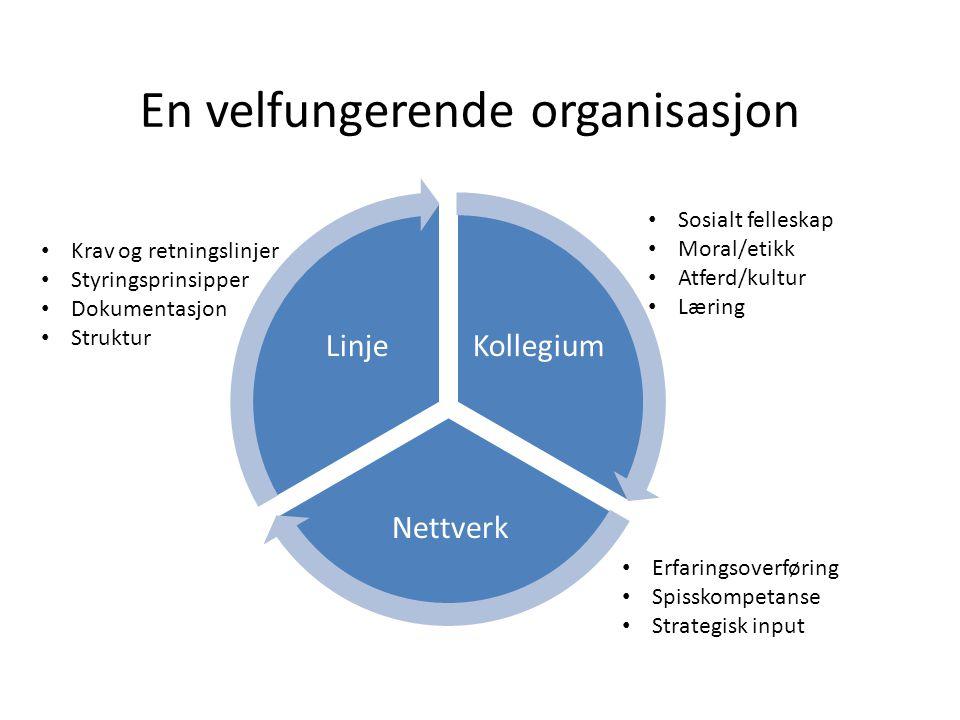 En velfungerende organisasjon Kollegium Nettverk Linje Krav og retningslinjer Styringsprinsipper Dokumentasjon Struktur Sosialt felleskap Moral/etikk