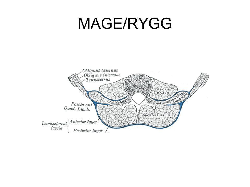 MAGE/RYGG