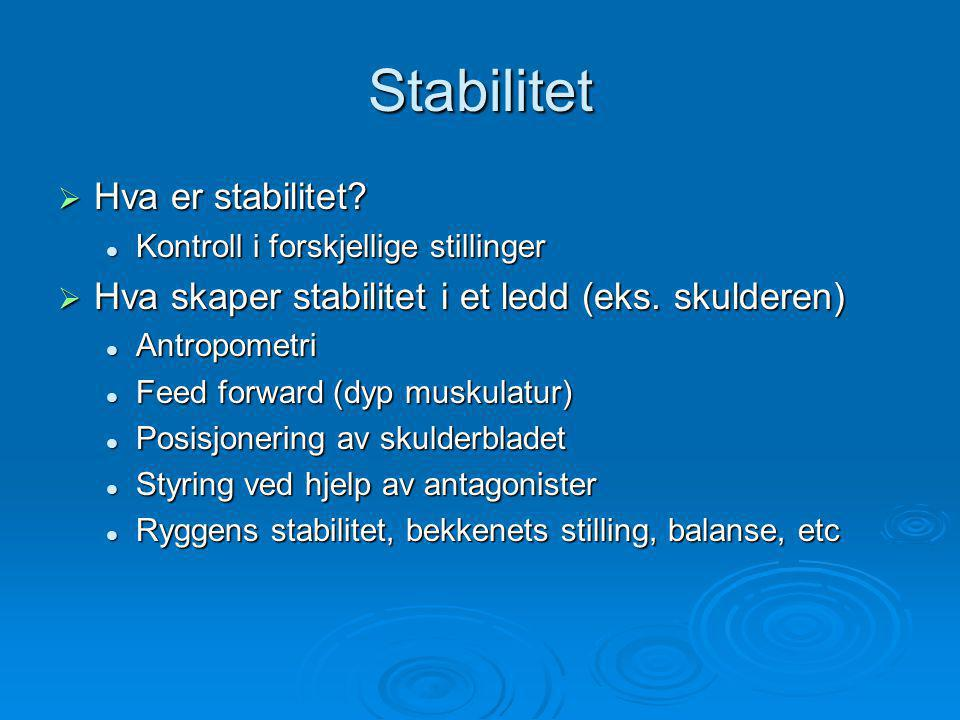 Stabilitet  Hva er stabilitet.