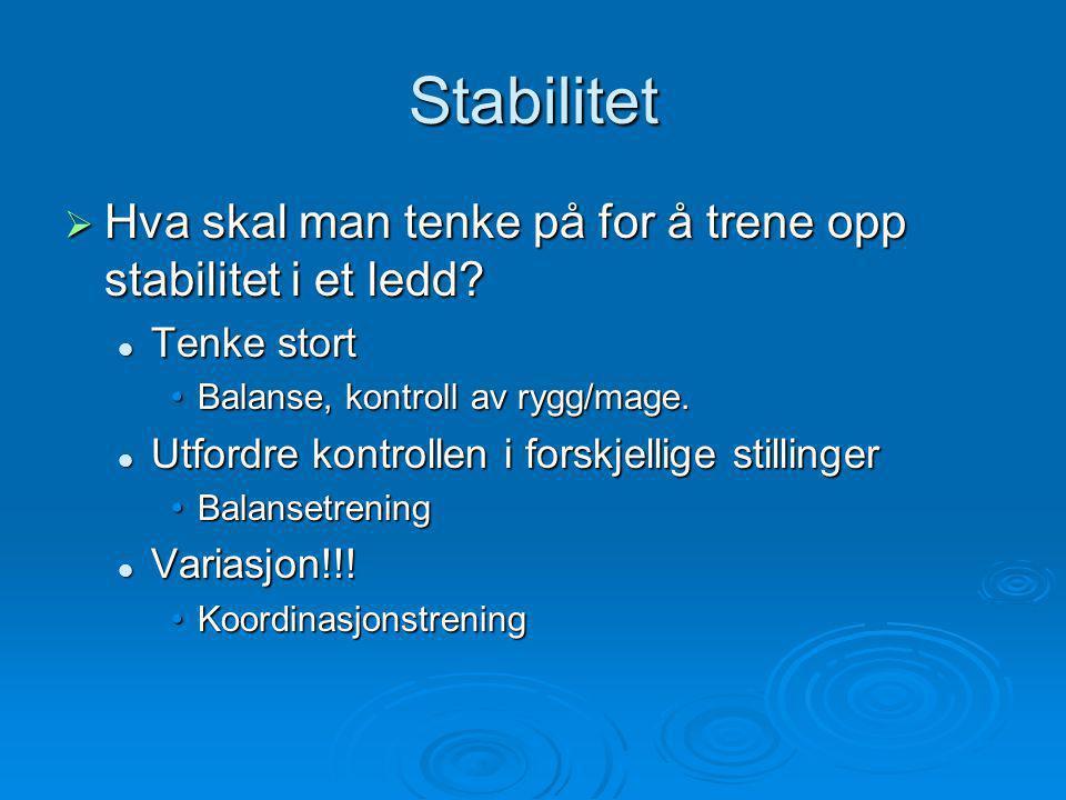 Stabilitet  Hva skal man tenke på for å trene opp stabilitet i et ledd.
