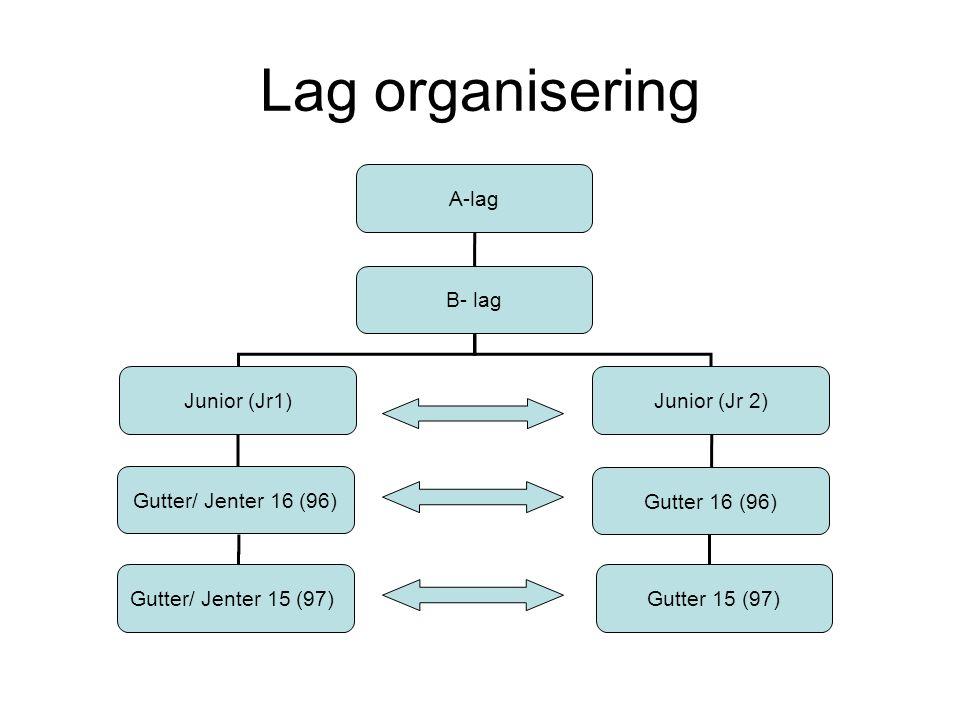 Lag organisering A-lag B- lag Junior (Jr1)Junior (Jr 2) Gutter 16 (96) Gutter/ Jenter 16 (96) Gutter/ Jenter 15 (97)Gutter 15 (97)