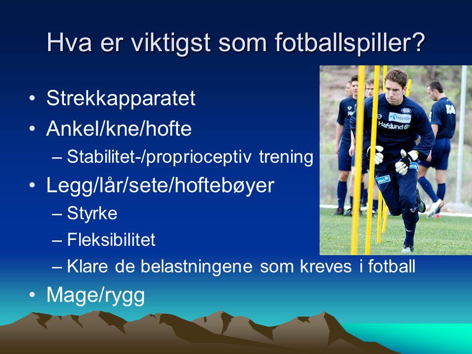 Hva er viktigst som fotballspiller? Strekkapparatet Ankel/kne/hofte –Stabilitet-/proprioceptiv trening Legg/lår/sete/hoftebøyer –Styrke –Fleksibilitet