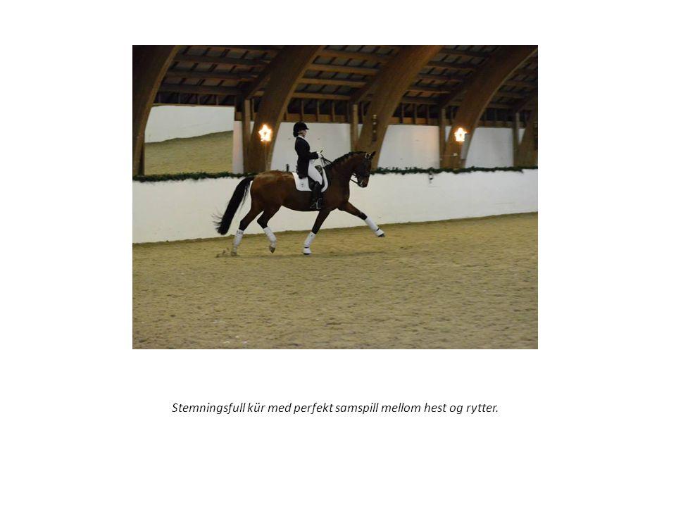Stemningsfull kür med perfekt samspill mellom hest og rytter.