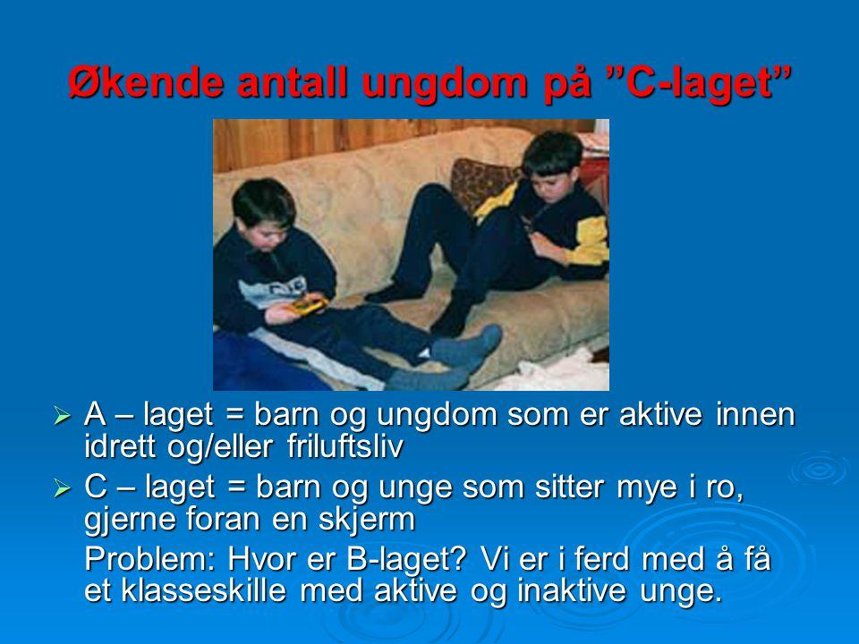 Fysisk aktiv i forrige friminutt (Bjelland og Klepp, 2000)