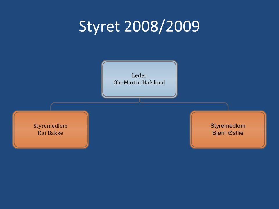 Styret 2008/2009