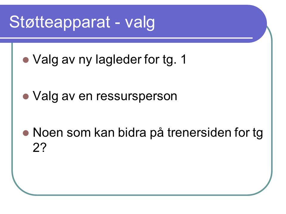 Støtteapparat - valg Valg av ny lagleder for tg.