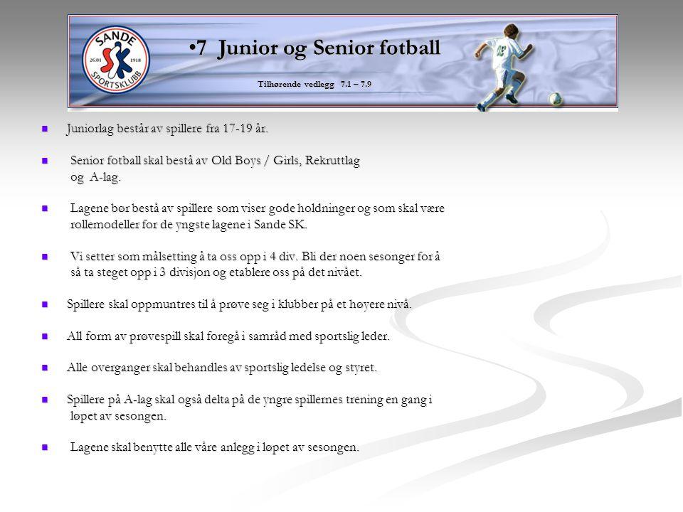 Juniorlag består av spillere fra 17-19 år. Juniorlag består av spillere fra 17-19 år. Senior fotball skal bestå av Old Boys / Girls, Rekruttlag Senior