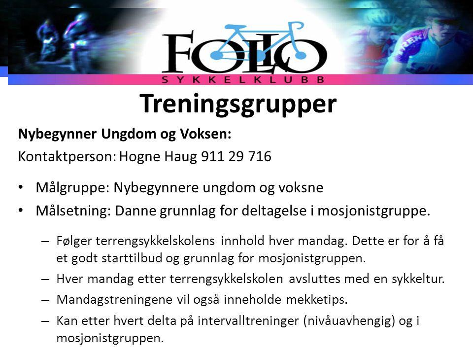 Treningsgrupper Nybegynner Ungdom og Voksen: Kontaktperson: Hogne Haug 911 29 716 Målgruppe: Nybegynnere ungdom og voksne Målsetning: Danne grunnlag f