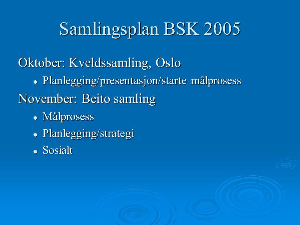 Samlingsplan BSK 2005 Oktober: Kveldssamling, Oslo Planlegging/presentasjon/starte målprosess Planlegging/presentasjon/starte målprosess November: Beito samling Målprosess Målprosess Planlegging/strategi Planlegging/strategi Sosialt Sosialt