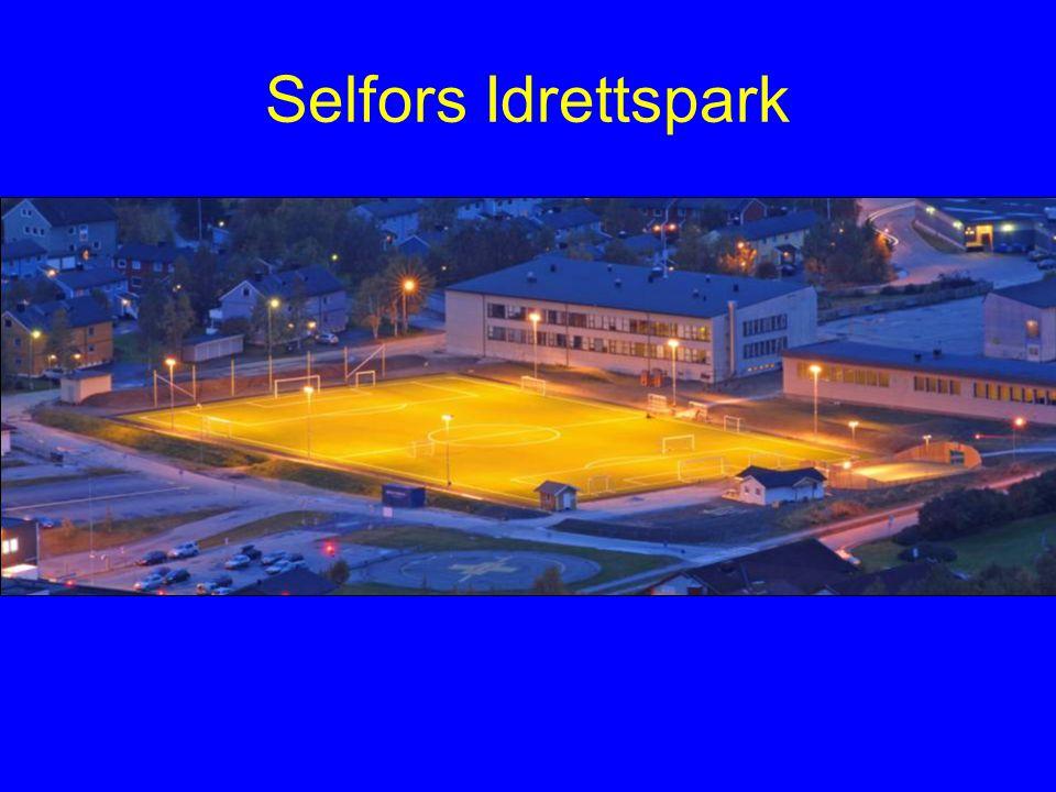 Selfors Idrettspark
