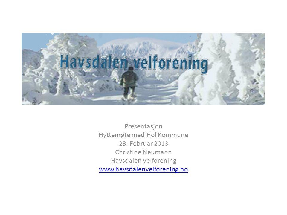 Presentasjon Hyttemøte med Hol Kommune 23. Februar 2013 Christine Neumann Havsdalen Velforening www.havsdalenvelforening.no