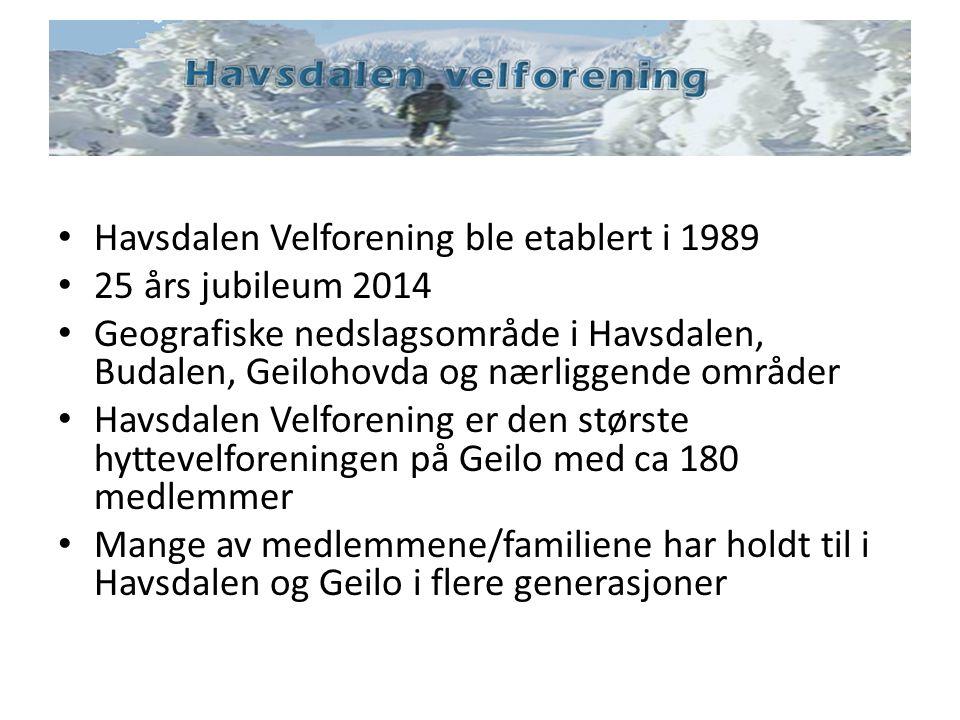 Havsdalen Velforening ble etablert i 1989 25 års jubileum 2014 Geografiske nedslagsområde i Havsdalen, Budalen, Geilohovda og nærliggende områder Havs