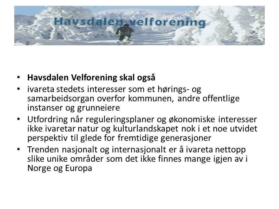 Havsdalen Velforening skal også ivareta stedets interesser som et hørings- og samarbeidsorgan overfor kommunen, andre offentlige instanser og grunneie