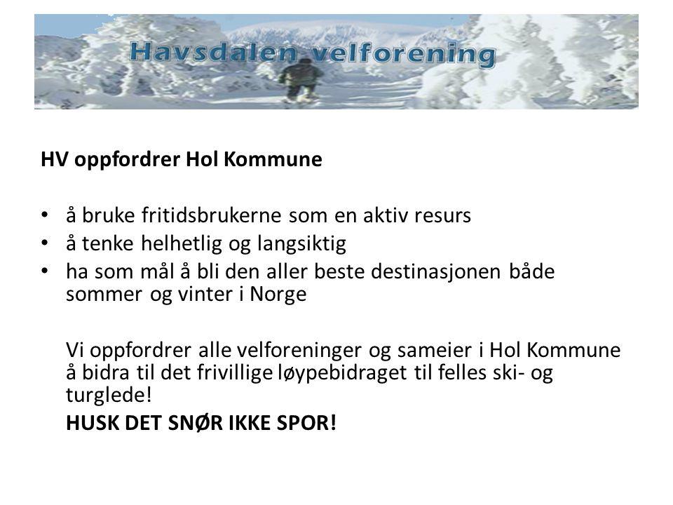 HV oppfordrer Hol Kommune å bruke fritidsbrukerne som en aktiv resurs å tenke helhetlig og langsiktig ha som mål å bli den aller beste destinasjonen b